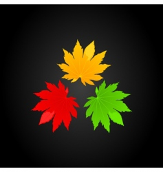 three leafs vector image
