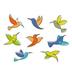 Colorful hummingbirds symbols or icons vector image