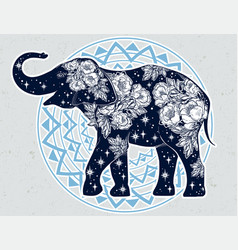 Elephant with wild rose flowers star ornaments vector