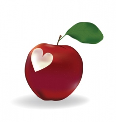 apple with a heart vector image