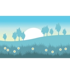Landscape of hill with flower at spring vector