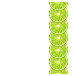 Seamless decorative border of lime slice vector