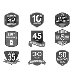Anniversary badge set of signs and vector