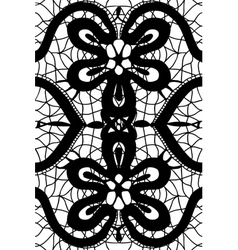simple pattern lace vector image