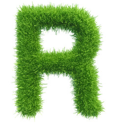 Capital letter r from grass on white vector
