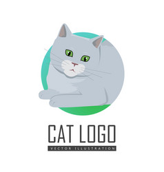 Cute grey cat vector