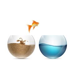 Gold fish jumping out of the aquarium aquariums vector