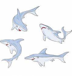 Four shark vector