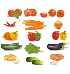 Super group colored vegetables vector