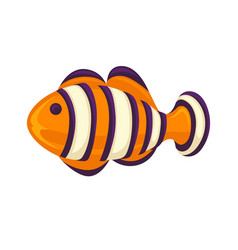 anemone fish isolated on white clownfish in vector image vector image