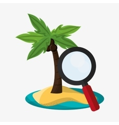 Palm tree of summer and vacation design vector