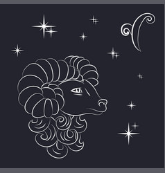 sign of the zodiac aries is the starry sky vector image