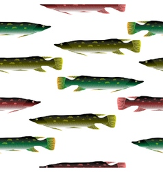 Pike seamless pattern vector image