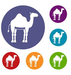 camel icons set vector image vector image