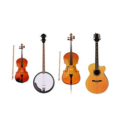Set of orchestra and folk instruments vector image vector image