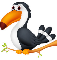toucan bird cartoon vector image vector image