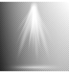 light effect - spotlight EPS 10 vector image vector image