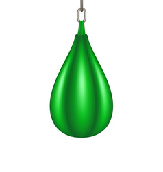 punching bag for boxing in green design vector image vector image