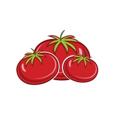 Red ripe tomatoes isolated on white backgroud vector