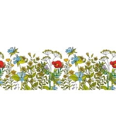 Seamless floral border with colored herbs vector