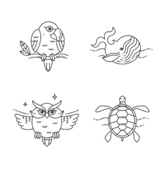 Parrot owl wheel and turtle vector
