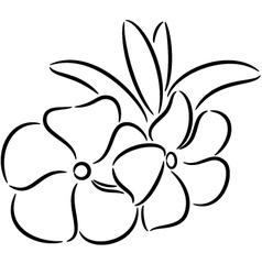 Periwinkle Flower vector image vector image