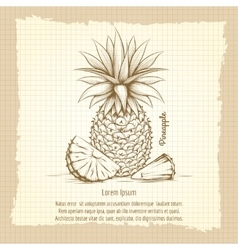 Pineapple retro style poster vector image vector image