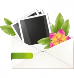 Frangipani flower vector image