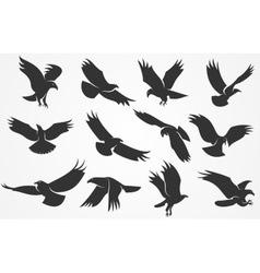 Silhouettes of eagles vector image