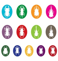 Insects group vector