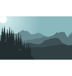 view of spruce and mountain vector image