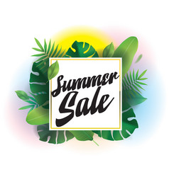 summer sale background for posters and vector image