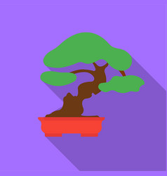 bonsai icon in flat style isolated on white vector image vector image