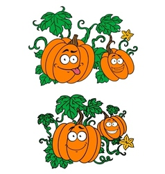 Cartoon pumpkins growing on vines vector
