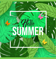 Hello summer typographical background with vector
