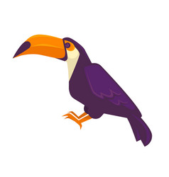 Purple toucan bird with long beak big exotic bird vector