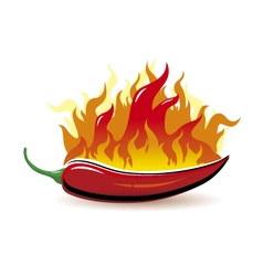 Red hot chilli pepper with fire on white ba vector