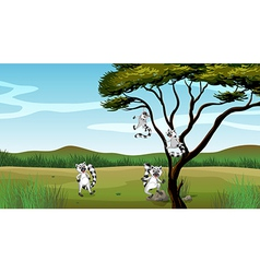 Wild animals playing in the tree vector image vector image
