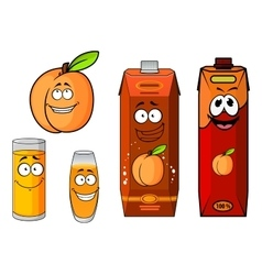 Apricot fruit juice packs and glasses vector