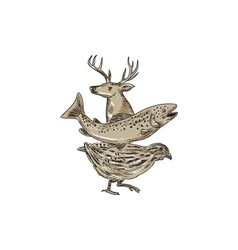 Deer trout quail drawing vector