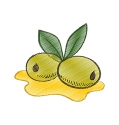Drawing olive oil leaf spill vector