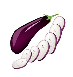 Fresh Purple Eggplant on A White Background vector image vector image