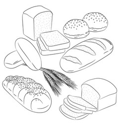 line art various bread baking vector image vector image