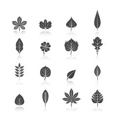 Plant leaves black icons set vector