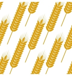 Seamless pattern of ears with ripe grains vector image