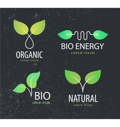 Set of eco logos leaves organic vector