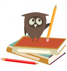 books and owl vector image