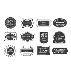 Collection of vintage monochrome retro labels vector image