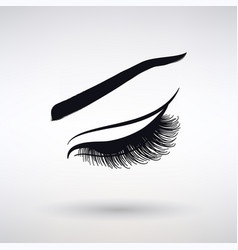 icon female long eyelashes vector image
