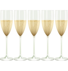 row of champagne flutes on a white background vector image